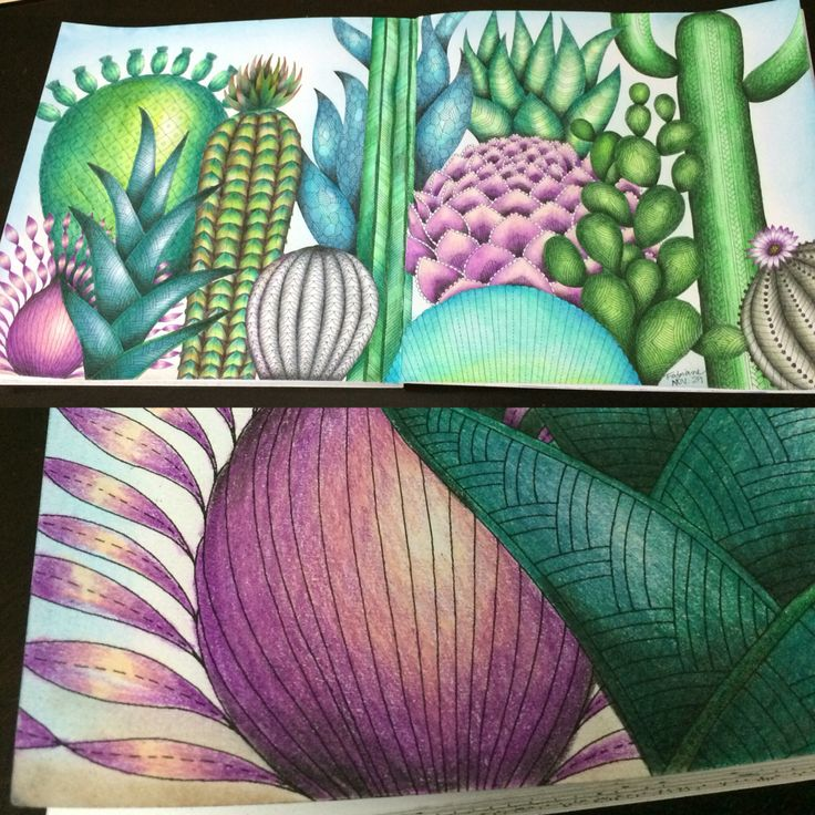 Colours By My Self Book Tropical World Millie Marotta Adult ColoringColoring