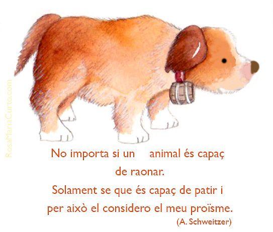 Estimar als animals
