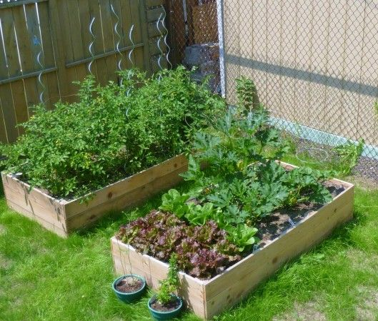 Cedar Raised Garden Planter | Do It Yourself Home Projects from Ana White