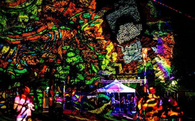 Fák, bokrok - fényfürdő - Night Projection fényfestés  Normafa Open Air 2014.06.13. Night Projection fényfestés  További fotók: https://www.facebook.com/media/set/?set=a.818751324803214.1073741873.216863264992026&type=3  #normafa #openair #normafaopenair #NightProjection #fényfestés #raypainting