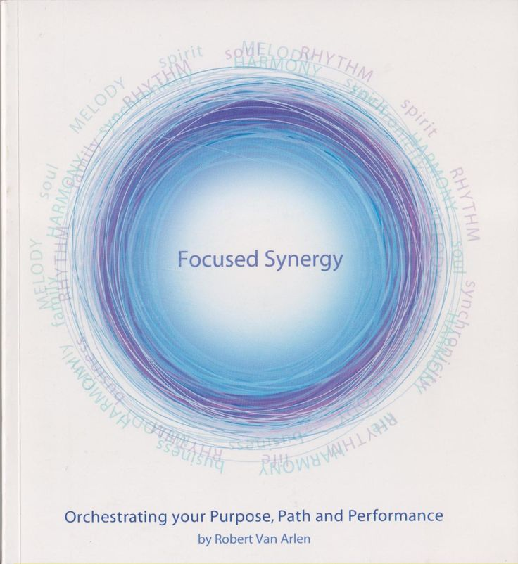 Focused Synergy - Orchestrating Your Purpose, Path And Performance by Robert Van Arlen: Vison Partners 9780979010002 Soft cover, 2nd Edition, Signed by Author(s) - SuperDealBooks
