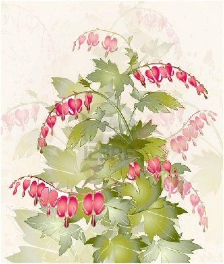 Illustration In 2020 Bleeding Heart Flower Illustration Flower Painting