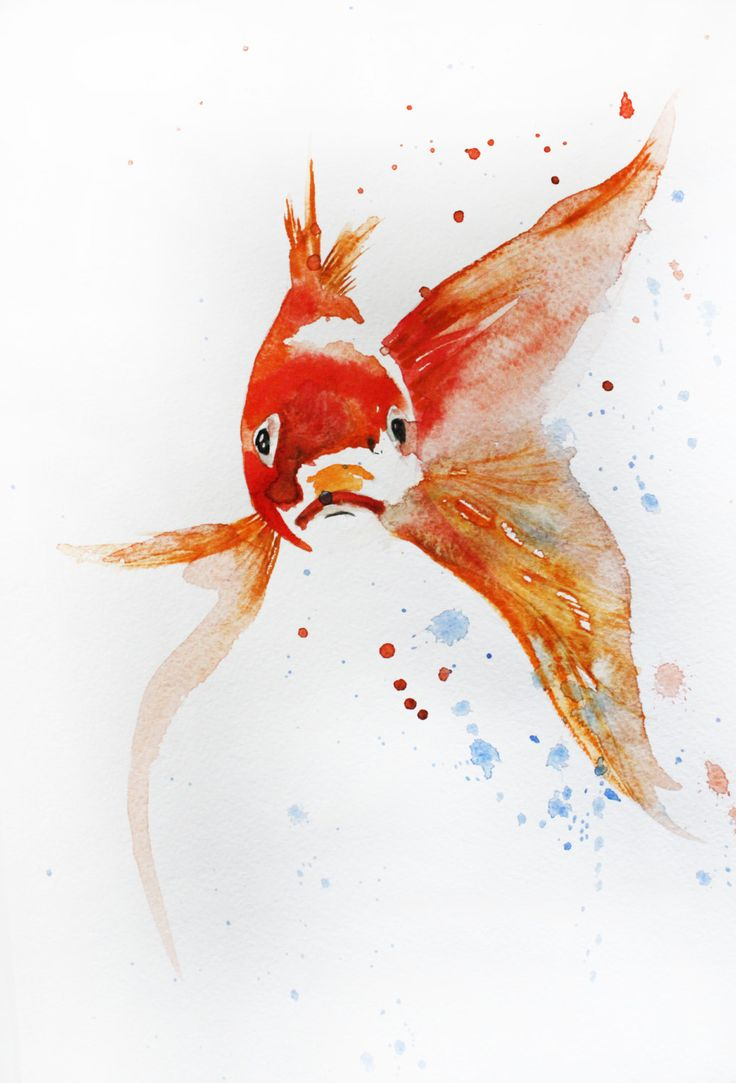 44 best images about bedroom painting on pinterest for Little koi fish