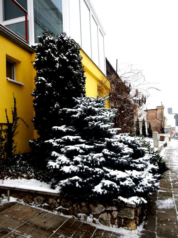 MIKULOVské ulice a uličky