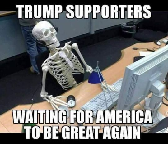 If they don't think it's great already, they'll never think it's great. And he certainly will not make it greater because he's horrifying and he hasn't even been sworn in yet.)