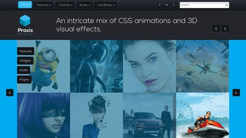 Download Theme Praxis Rockettheme WordPress Theme