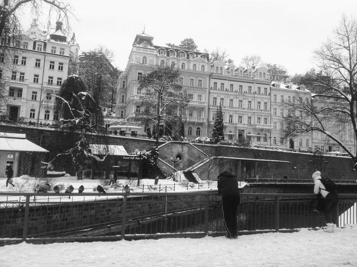 Andrea Gerak Photo: Pondering. Black and white photo of winter Karlovy Vary