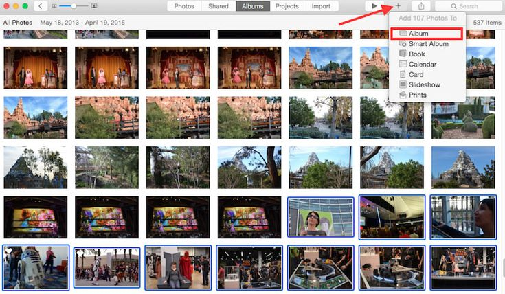 Come ordinare le foto sul Pc. I migliori programmi gratis per organizzare e catalogare le immagini su Windows. 5 Software per gestire l'archivio fotografico
