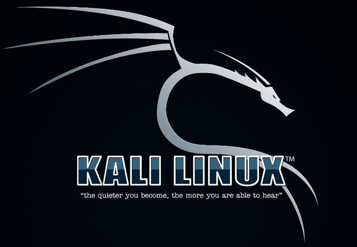 Hacking Wi-Fi with KALI LINUX