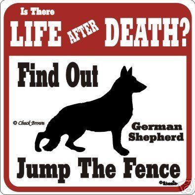 Funny German Shepherd Pictures Beware Of Dog Signs Forums