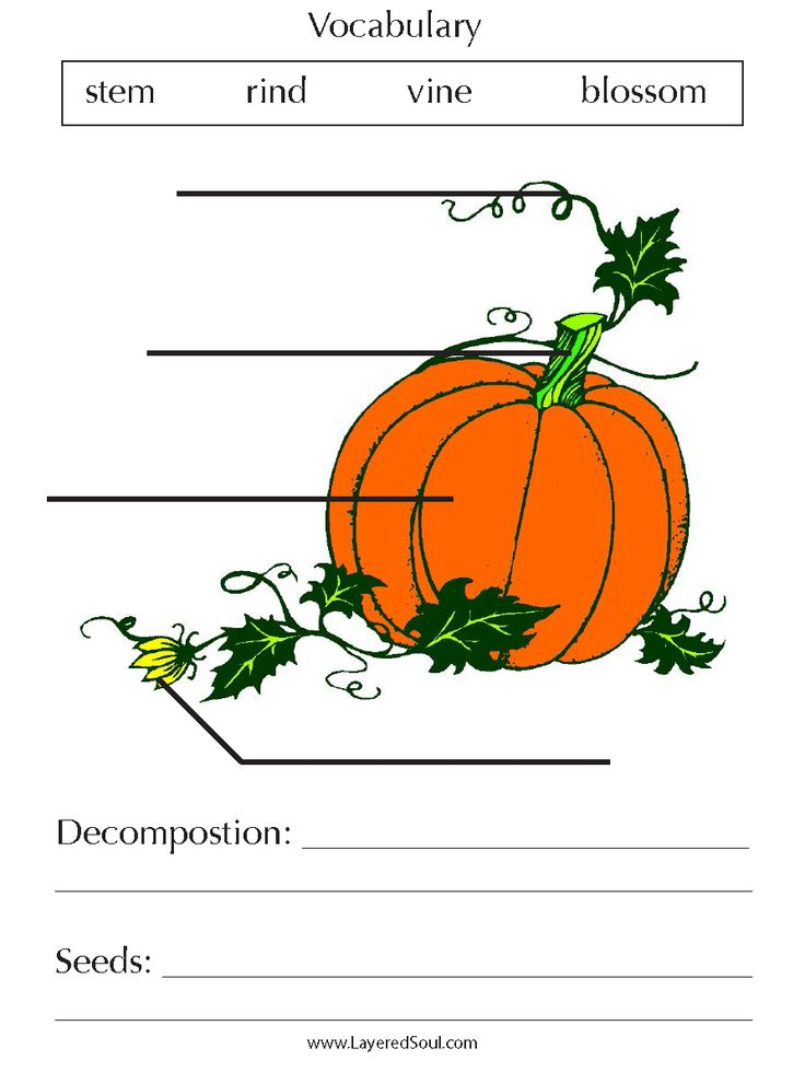 Printable Worksheets thanksgiving science worksheets : 32 best Fall Science images on Pinterest   Learning activities ...