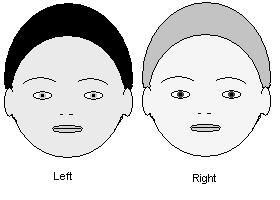 Gender quiz. | Mathilda's Anthropology Blog.