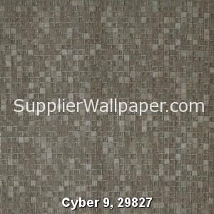 Cyber 9, 29827