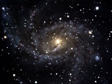 Spiralgalaxie NGC 6946