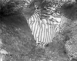 Microstructure of an 0.8% C annealed steel