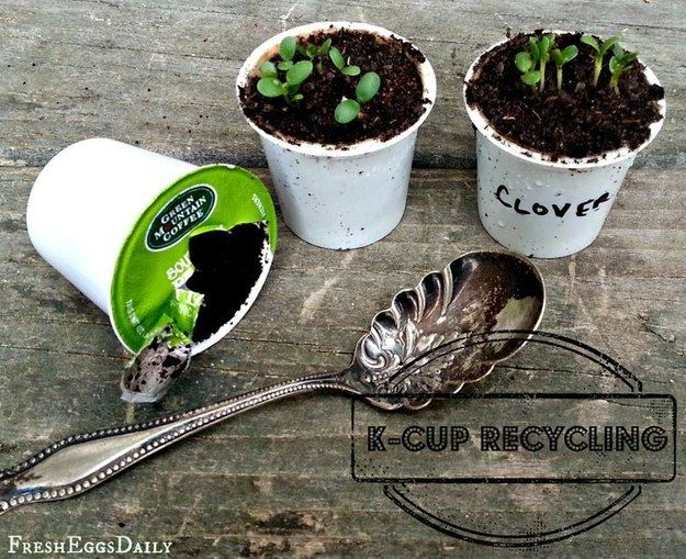 Make tiny seed starters. | 33 Genius Ways To Reuse Your K-Cups