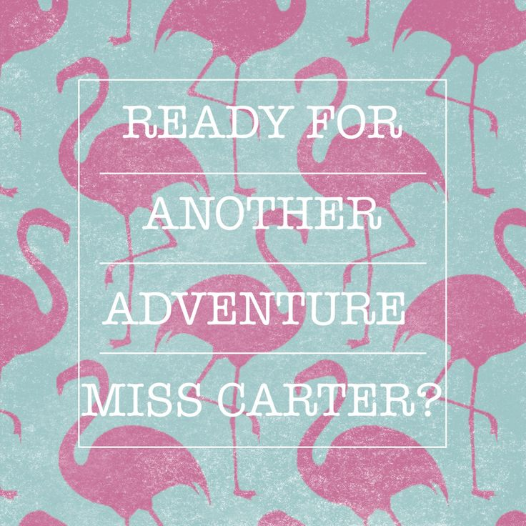 Ready for Another Adventure?