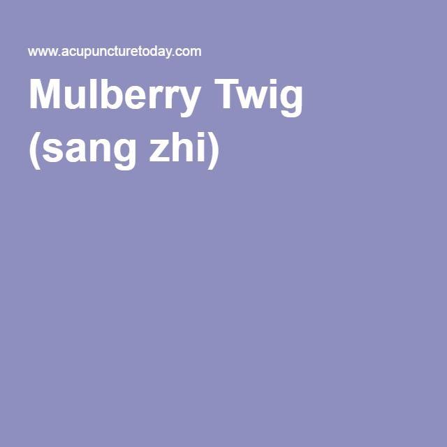 Mulberry Twig (sang zhi)