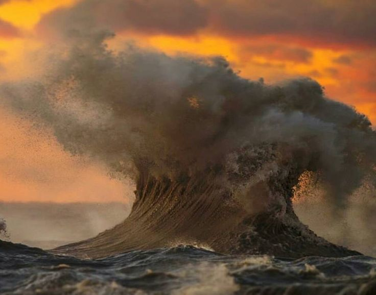 """""""Dave Sandford is a Canadian photographer who spent days in a wetsuit in the middle of Lake Erie…"""""""