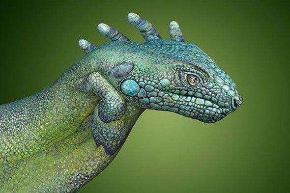 hand painting!Social Network, Hands Painting, Painting Art, Body Painting, Body Art, Daniel Guido, Lizards, Face Painting, Hands Art