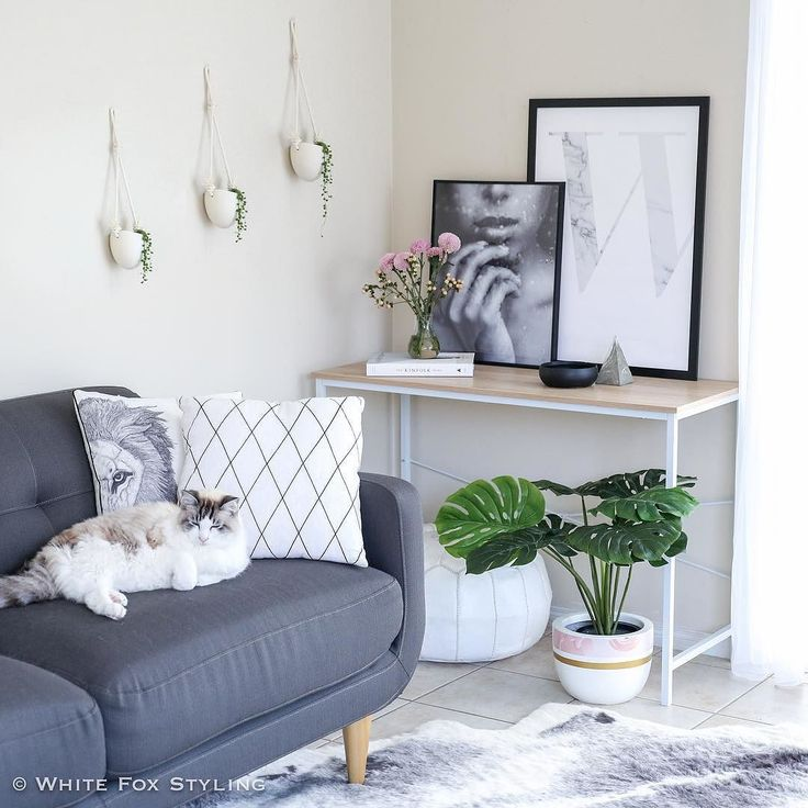 Scandi corner made complete by a Scandi style cat! Thanks Bailey. What have you been up to this wintery #Caturday? #whitefoxstyling