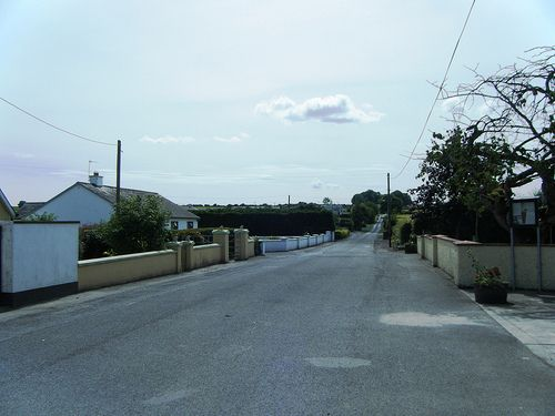 Shanahoe Tidy Towns