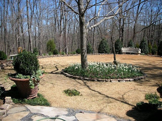 Deep Mulch Gardening , 74 Best Landscape Outdoor Images On Pinterest