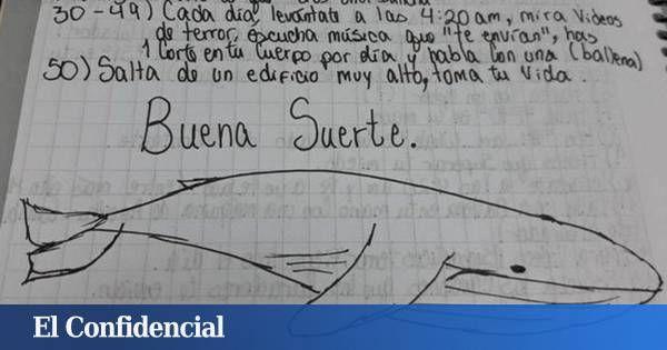 Latam - América Latina: La ballena azul, ¿responsable de la ola de suicidios adolescentes en Latinoamérica?. Noticias de Mundo. Las autoridades de la región investigan si muchas de las últimas muertes y mutilaciones autoinfligidas en menores están relacionadas con este macabro pasatiempo
