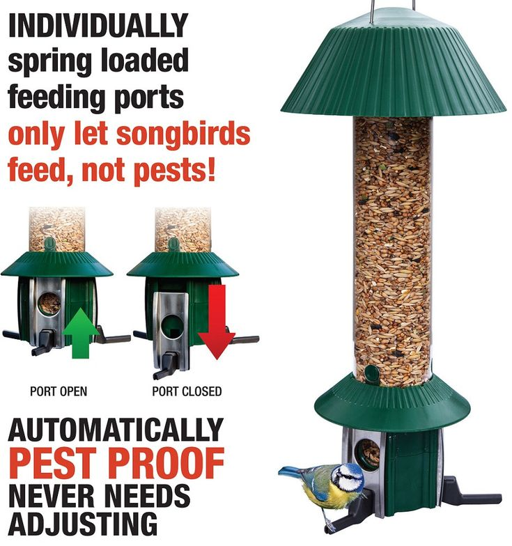 This premium bird feeder is not just 100% squirrel proof but also pest proof against pigeons, rats and other larger birds. It has been designed, tested & proven to work. No settings to adjust & 2 year guarantee.