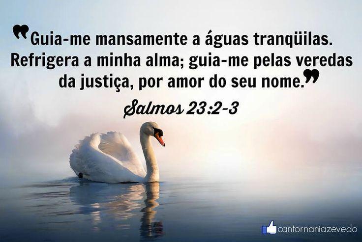 Ministério Vivo Deus Vivo: SALMOS 23