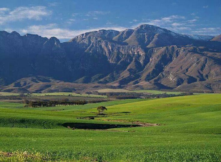 Langeberg Mountains, South Africa
