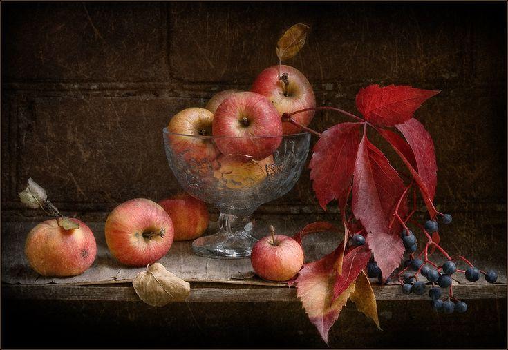 Маленькие яблочки и дикий виноград в   приятно-пасмурный теплый октябрьский день на балконе..