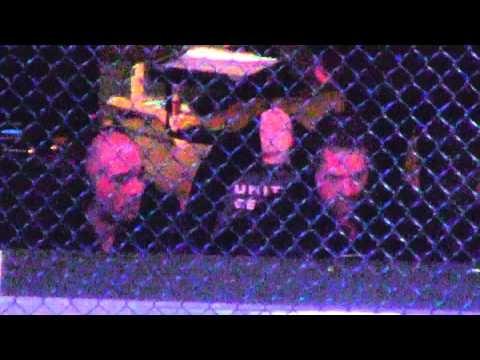Joe Rogan and Mike Goldberg Chillin at UFC On FOX 6