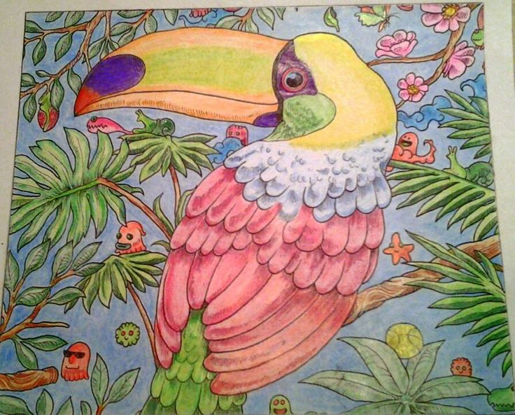 My Toucan From The Animorphia Colouring Book