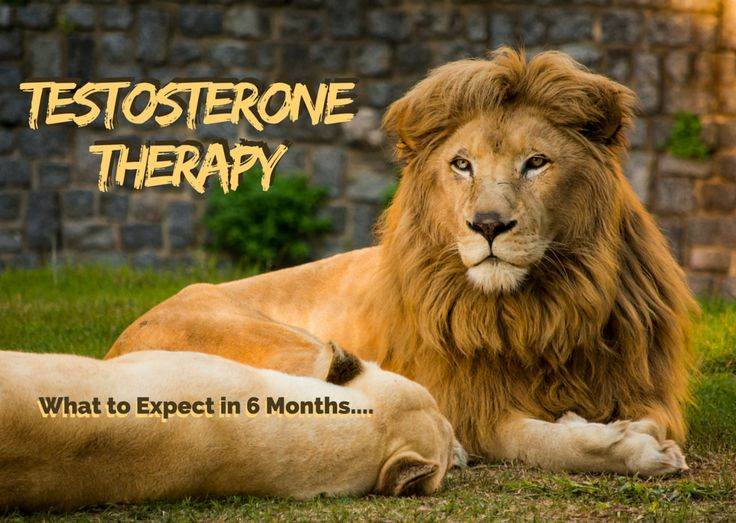 """<a href=""""http://www.aaiclinics.com/treatments/testosterone-therapy/what-can-i-expect-testosterone-injections/"""">Testosterone Injections</a> – Curious about testosterone injections Therapy? Read more about what you can expect from this treatment and contact us for more information (954) 860-2139"""