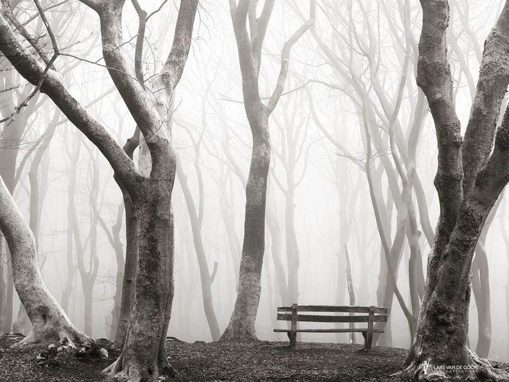 The Bench by Lars van de Goor on 500px
