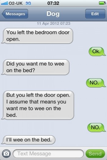 From www.hellogiggles.com.: Funny Texts,  Internet Site,  Website, Web Site, Texts Messages, Dog Texts, Dogs Texts, Bedrooms Doors, Hilarious