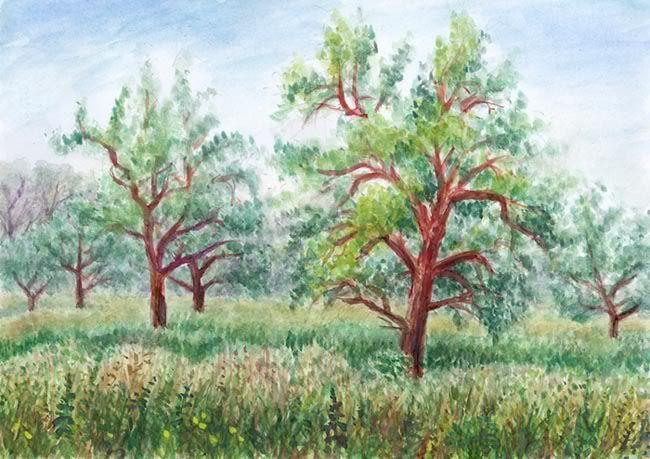 Vzpomínka na zahrádky u Stromovky (po povodni v roc 2002), akvarel Jana Haasová