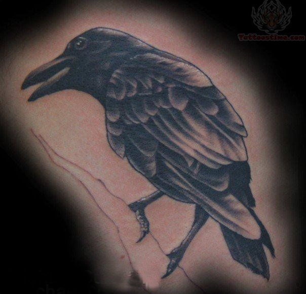 crow tattoos | Black Crow Tattoo Sample