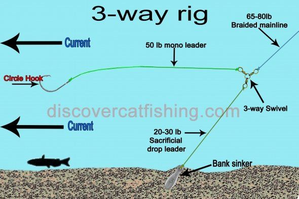 1000 images about fishing rig on pinterest live fish for A rig fishing