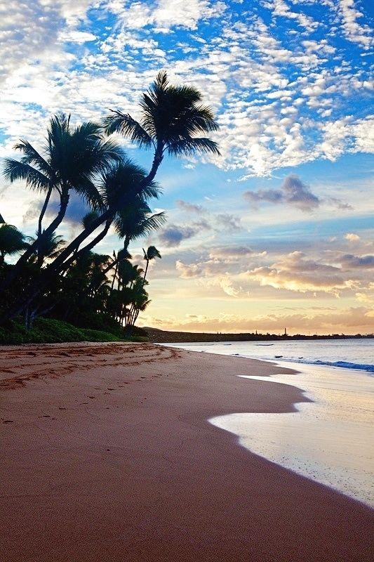 Natal, Brasil - Amei - Lua de Mel perfeita