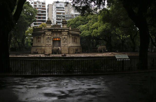 Animals still in cages a year after Buenos Aires zoo closure http://www.staradvertiser.com/2017/05/23/breaking-news/animals-still-in-cages-a-year-after-buenos-aires-zoo-closure/?utm_campaign=crowdfire&utm_content=crowdfire&utm_medium=social&utm_source=pinterest