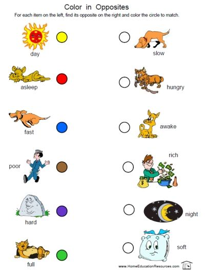 Printable Preschool and Kindergarten FREEBIE of the day -- 12 page Opposites Worksheets packet from HomeEducationResources.com