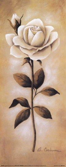 White Roses I Fine-Art Print by Diane Cochrane at UrbanLoftArt.com