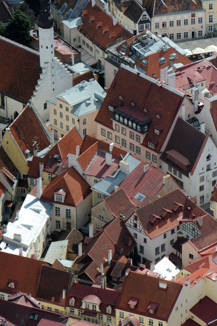 Tallinn vanalinn #Tallinn #vanalinn