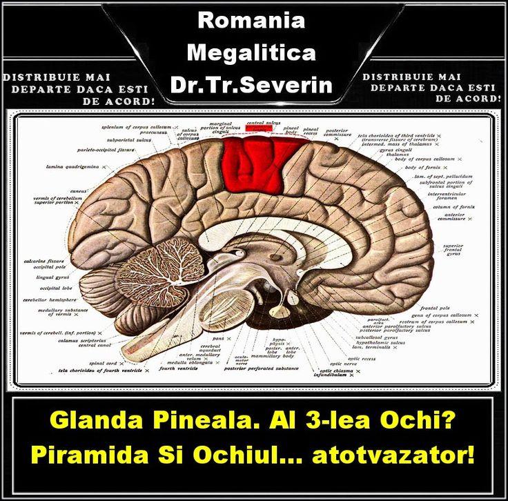 OPINII PERSONALE: Glanda Pineala. Al 3-lea Ochi? Piramida si Ochiul... atotvazator!