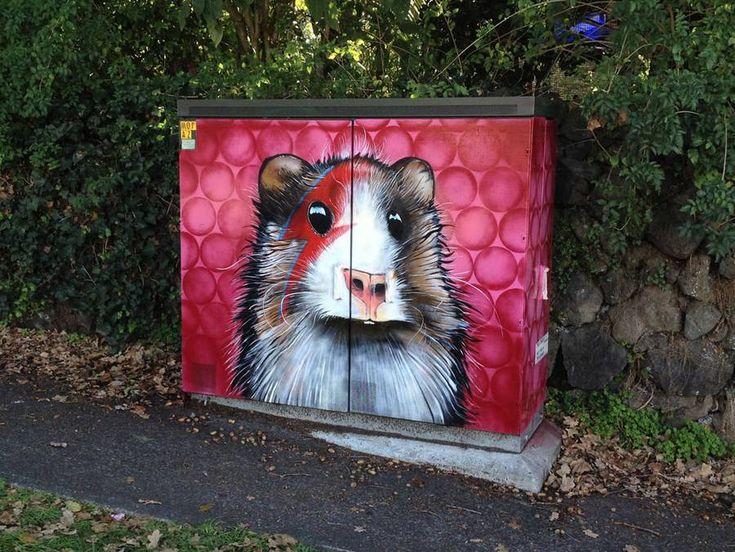 L'artiste néo-zélandais Paul Walsh habille les coffres abritant le plus souvent les tableaux électriques dans les rues des villes. Pour cela, il peint des caricatures d'animaux sur leurs façades. Il transforme ce mobilier urbain peu attractif en oeuvre artistique pour leur offrir un aspect coloré, attirant l'oeil.