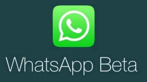 """WhatsApp Beta: arriva la copia delle didascalie, e la funzione """"raggiungi amico"""" Le novità in questione non sono indubbiamente epocali, ma costituiscono piccoli aggiornamenti doverosi: il refresh delle icone, iniziato di recente, andava portato a termine e, con la nuova icona del #whatsapp #beta #aggiornamento"""