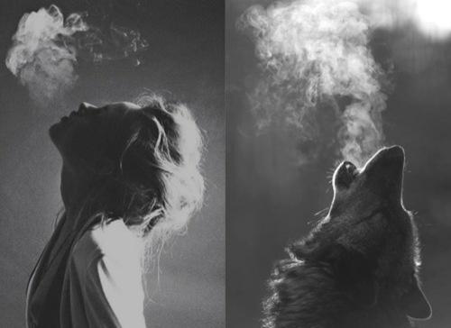 : Girls Generation, Black White, Wolves, Wild Women, Cafe Art, Photography, Smoke, Animal, The Moon