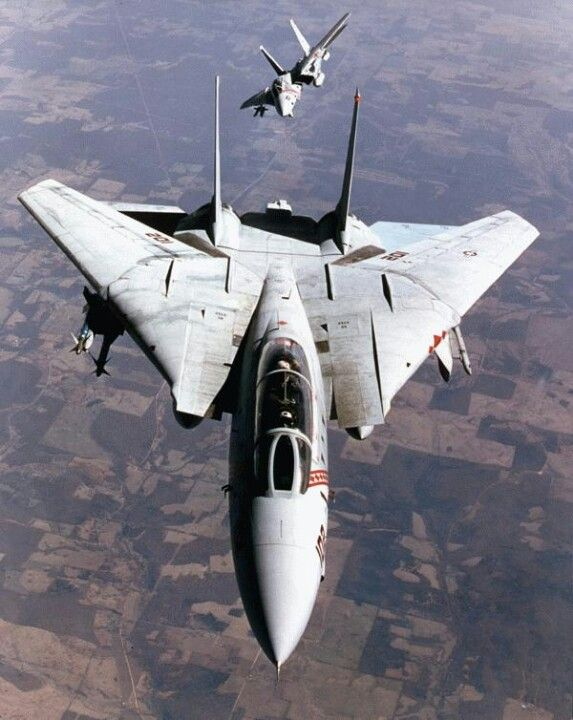 The Flying Cat, F-14 Tomcat